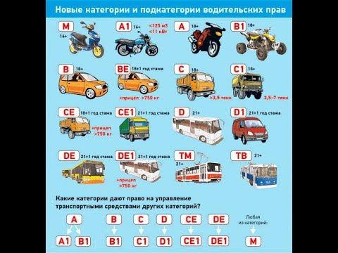 Все категории водительских прав нового образца. Категории водительских прав РФ 2019.