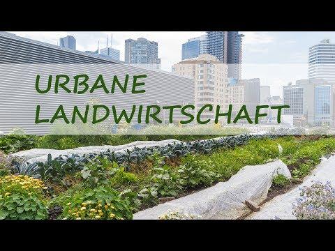 Urbane Landwirtschaft — Mythos Oder Realität?