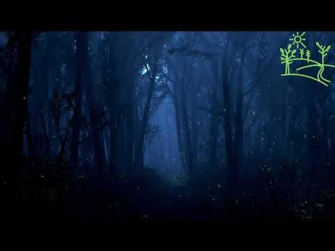 Ночное пение соловья Соловей Сверчок и Лягушки