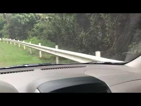 Mount Palay-Palay National park Monkeys