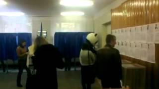 Панда голосует на парламентских выборах 2012 Украины