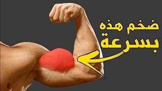 أقوى تمارين البايسبس للتضخيم و التكوير (Biceps workouts)