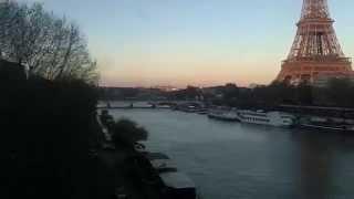 REQUIN TIGRE - FAUVE (clip non officiel)
