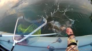 Рыбалка на иртыше возле иртыша