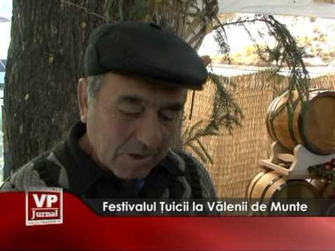 Festivalul Tuicii la Valenii de Munte