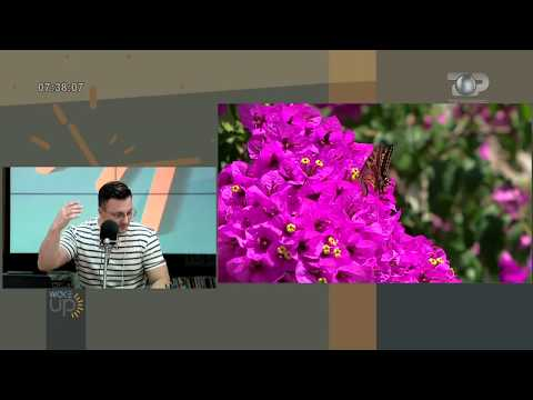 Wake Up, 26 Prill 2018, Pjesa 2 - Top Channel Albania - Entertainment Show