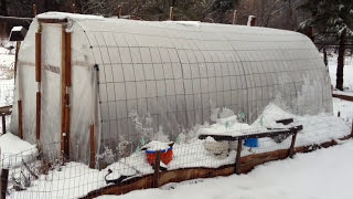 $150 Greenhouse - Incredibly simple and sturdy!