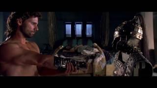 Troy (2004) Video
