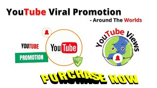 I will do organic youtube video promotion with real traffic