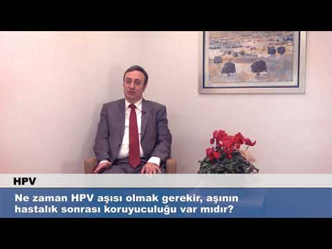 Human papillomavirus infection development