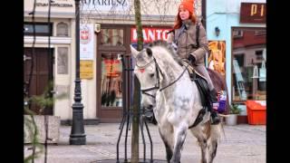 preview picture of video 'Koń w sztabie wolontariuszy - WOŚP Mikołów.'