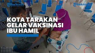 Kota Tarakan Pertama Kali Menggelar Vaksinasi bagi Ibu Hamil dengan Target 387 Orang