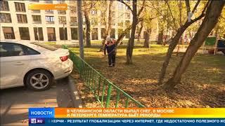 Климатический парадокс: температура бьет рекорды в Москве и Петербурге