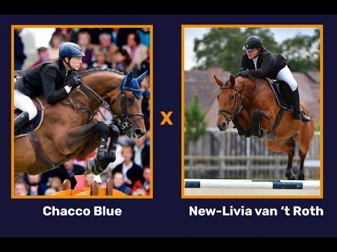 Chacco Blue x New-Livia van 't Roth