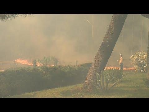 Rianxo continúa asolado polo lume 260319