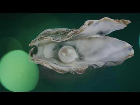 İnci Yaşam Nazilli Tanıtım Filmi