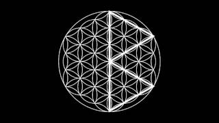 Runes In The Flower Of Life