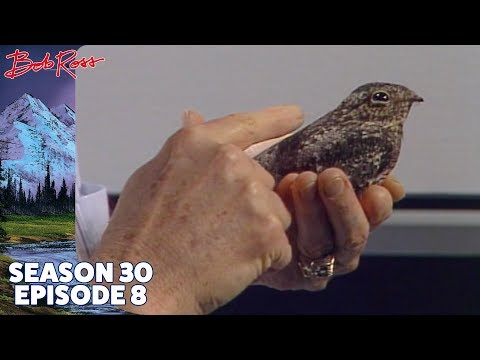 Bob Ross - Home in the Valley (Season 30 Episode 8)