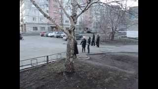 Разборки на районе ))
