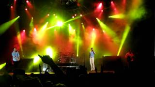 Lucky-311-live in Chula Vista