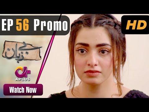 Pakistani Drama | Bezuban - Episode 56 Promo | Aplus Dramas | Usama Khan, Nawal Saeed, Junaid
