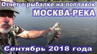 Рыбалка на москве реке в сентябре