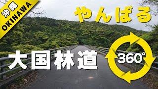 VR動画で沖縄 ツアー『自然が生んだアトラクション大国林道』4K 360°カメラの動画