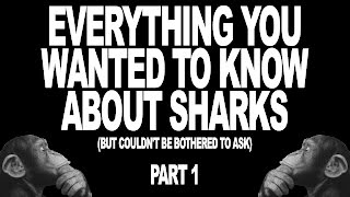Everything You Wanted To Know About Sharks (But Couldn't Be Bothered To Ask) Part 1