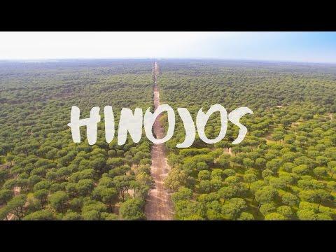 Alrededores de Hinojos a vista de pájaro (Huelva)