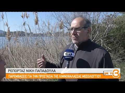 Παρεμβάσεις για την προστασία της λιμνοθάλασσας Μεσολογγίου    22/02/2019   ΕΡΤ