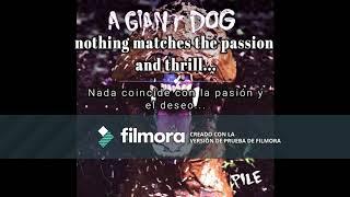 A Giant Dog - I'll come crashing (Lyric// sub.)