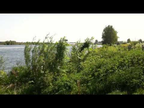 Aan de Maas bij Vierlingsbeek
