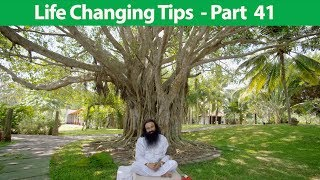 Life Changing Tips Part 41 | Saint Dr MSG Insan