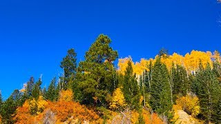 """Peaceful Music, Relaxing Music, Instrumental Music """" Autumn Mountain Meadow"""" by Tim Janis"""