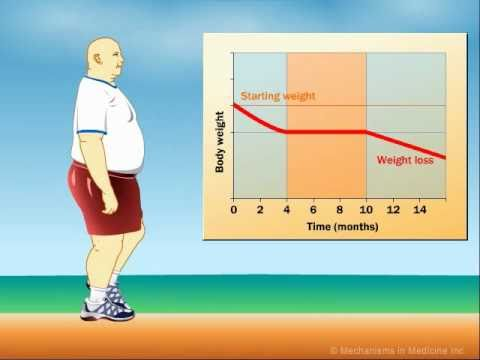 How Does Exercise Impact Weight Loss?
