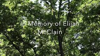 In honor of Elijah McClain