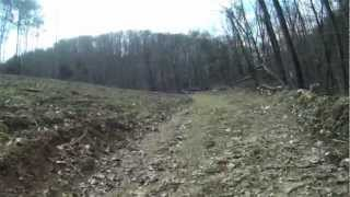 Owner Financed Land in Tennessee | Cave Springs Tract 2