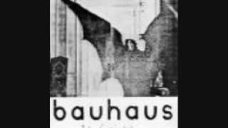 Bauhaus Silent hedges
