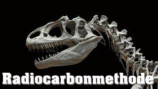 Datierung Von Fossilien, Radiocarbonmethode