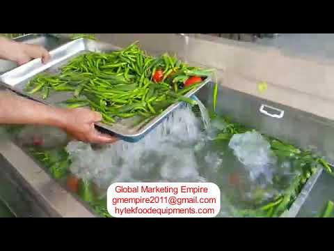0.5 KW Leafy Vegetable And Fruits Washing Machine