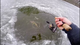 GIANT Fish Hooked Under CLEAR Ice (Crazy Fight)