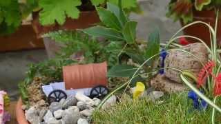 How To: Create Kids Miniature Gardens