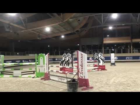 Poney Sport, PFS potentiel AS2/AS1