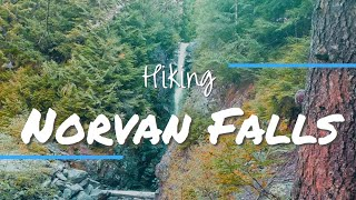 Hiking Cedar Mills Trail and Lynn Headwaters to end at Norvan Falls.