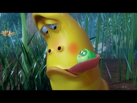 LARVA - MITE | Cartoon Movie | Cartoons For Children | Larva Cartoon | LARVA Official