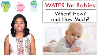 Water for Babies | When to start? How to offer and How much to give?