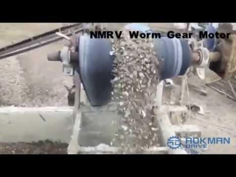 Huwag worm mula sa kanila makakuha ng taba