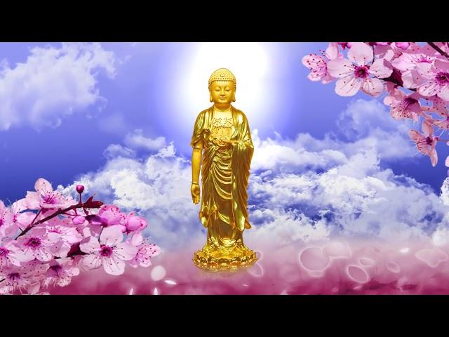 Phương pháp niệm Phật nhất tâm bất loạn – Pháp sư Tịnh Không