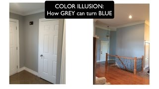 COLOR ILLUSION - How GREY Can Turn BLUE