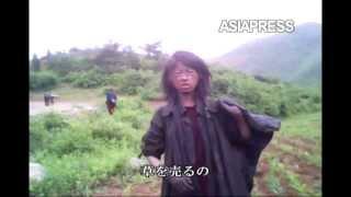 [アジアプレス 北朝鮮内部取材1]飢える23歳の女性ホームレス...